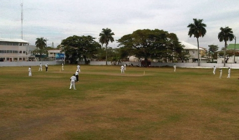 DCC outfield