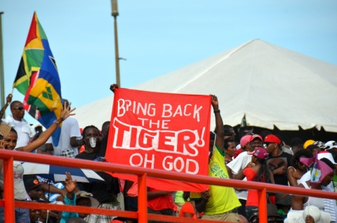 Bring Back The Tiger, 2013