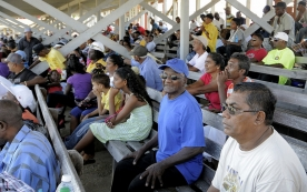 Spectators At Albion For ODI 6, 2013