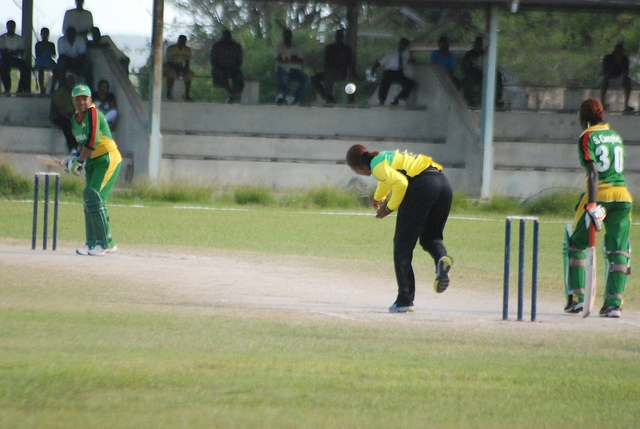 June Ogle v Jamaica, 2012